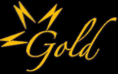 Gold Indoor Percussion